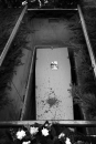 Kist in het graf